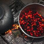 Kräuterpädagogik Wild-Beeren verarbeiten
