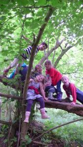 Wildnisschule-Kindergruppe