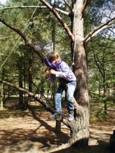 Familien-Kinder-Wildnis