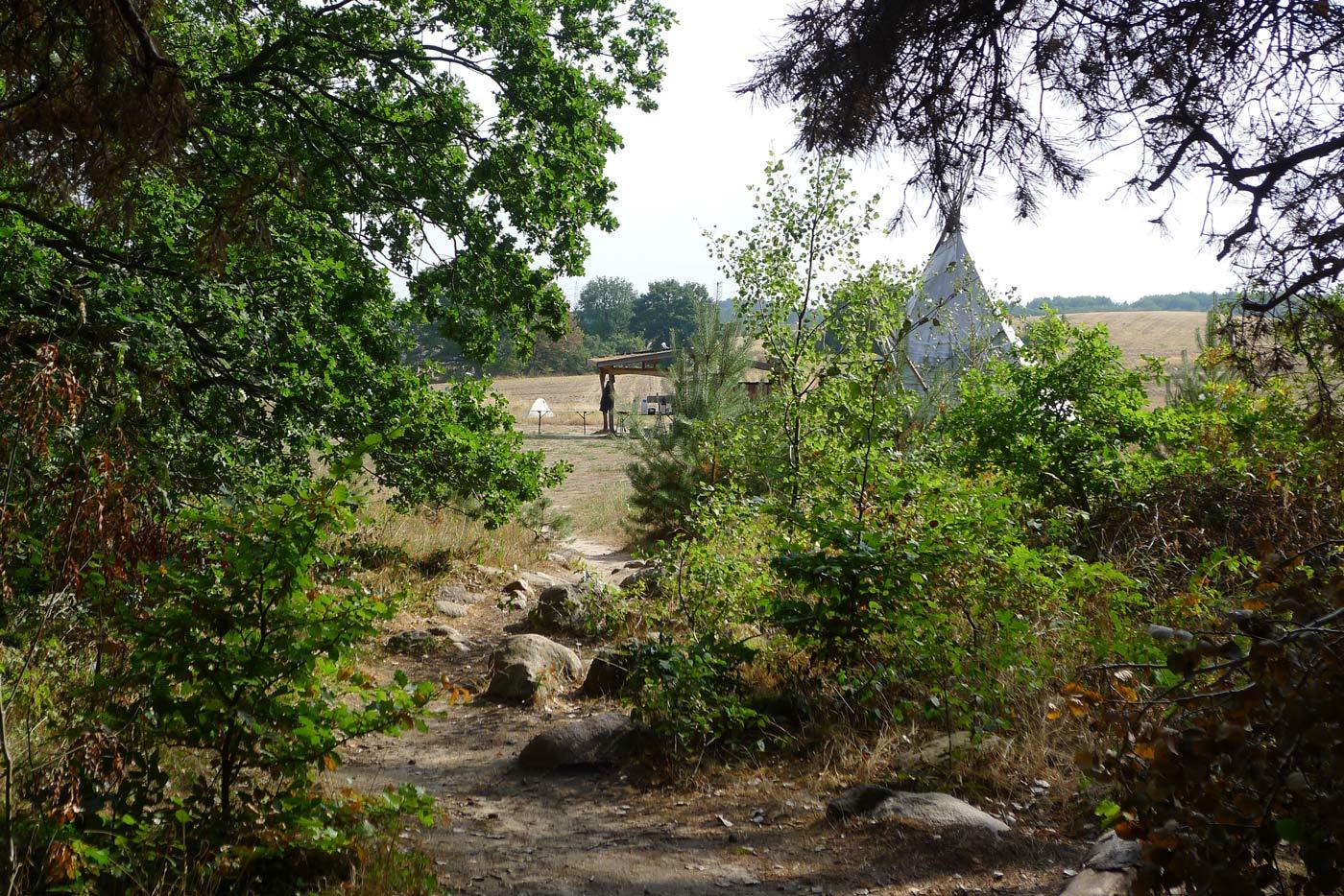 Wildnisschule-Hoher-Flaeming-Wildnisplatz-Wildnispaedagogik